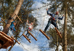 hindernissen op hoogte in de tokkelbaan in het Klimbos Friesland